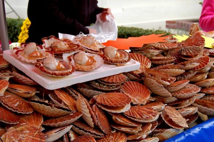 food-festival-autumn-2014_210